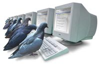 PigeonRank technology
