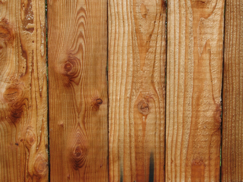 Textura dřeva ke stažení